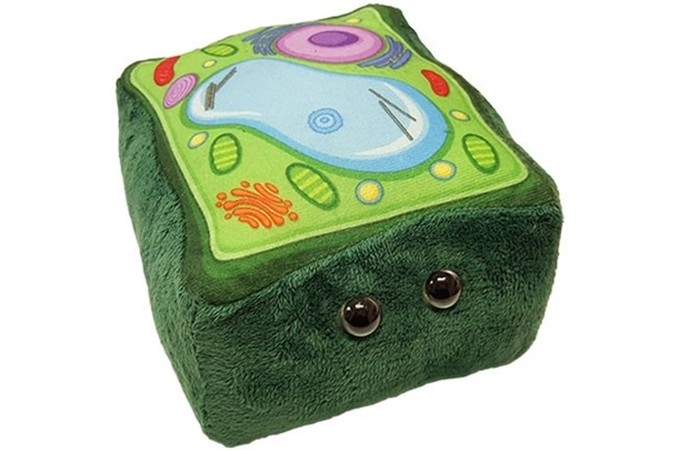 GIANTmicrobes - Plant Cell