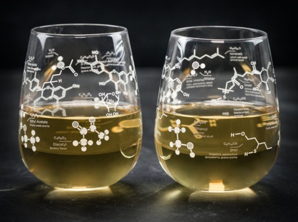 The Science of White Wine - Chemistry Stemless Glass Set