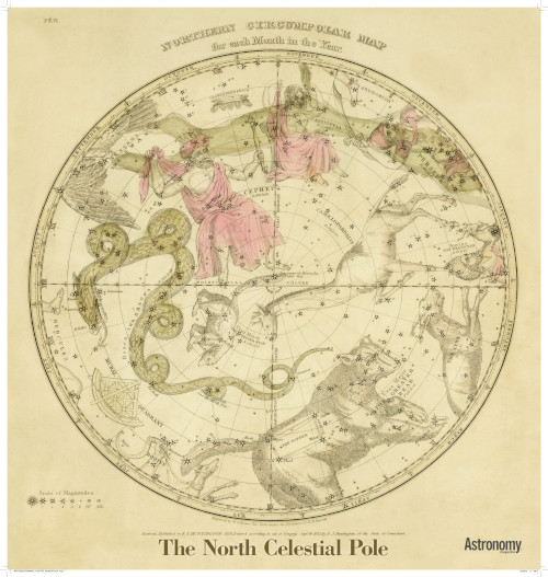 Antique Star Chart - The North Celestial Pole