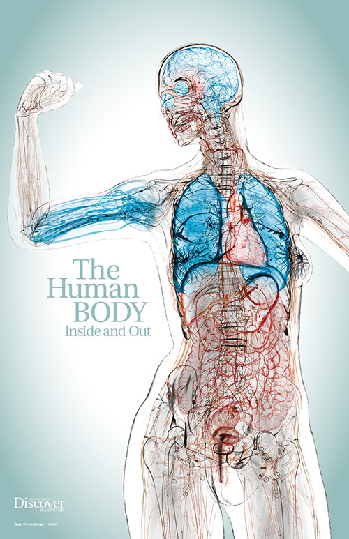 The Human Body: Inside and Out Poster