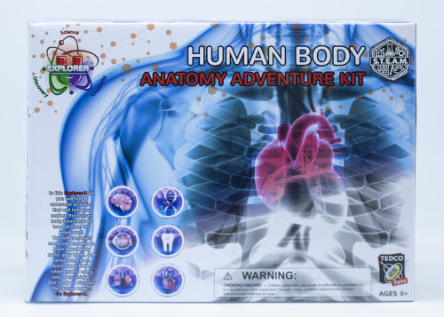 Human Body Anatomy Adventure Kit